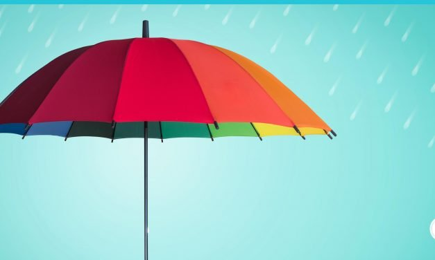 The Need-to-Knows About Umbrella Liability Insurance